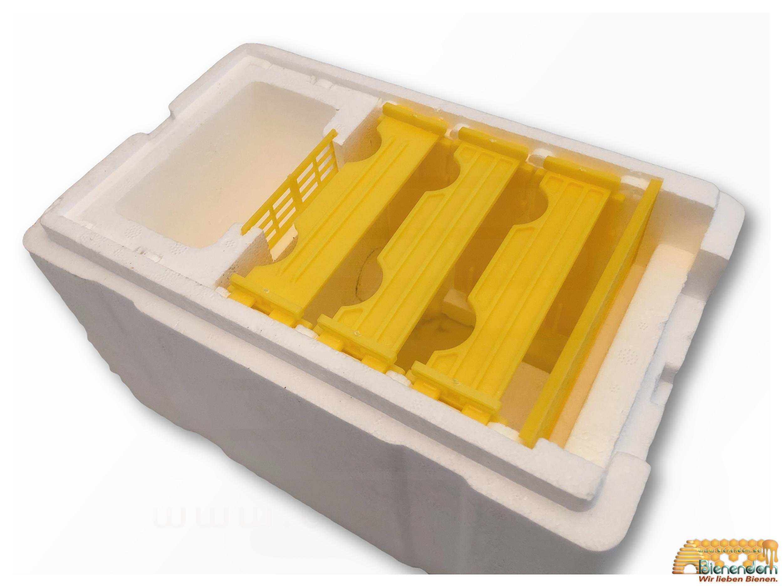 Begattungskasten | Styropor | Komplettset